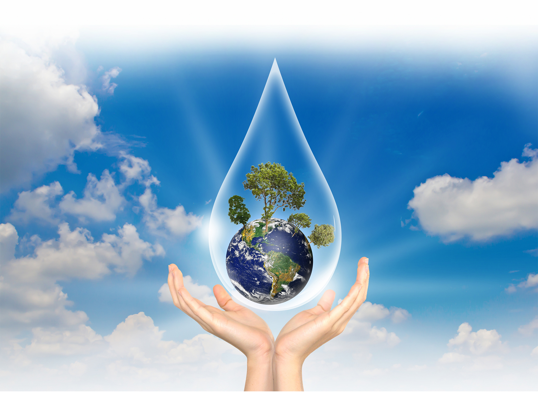 Image for Environmental Policy section